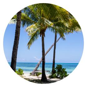 Plantation Island Resort - Specials