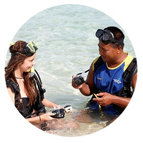Plantation Island Resort - Activities - Scuba