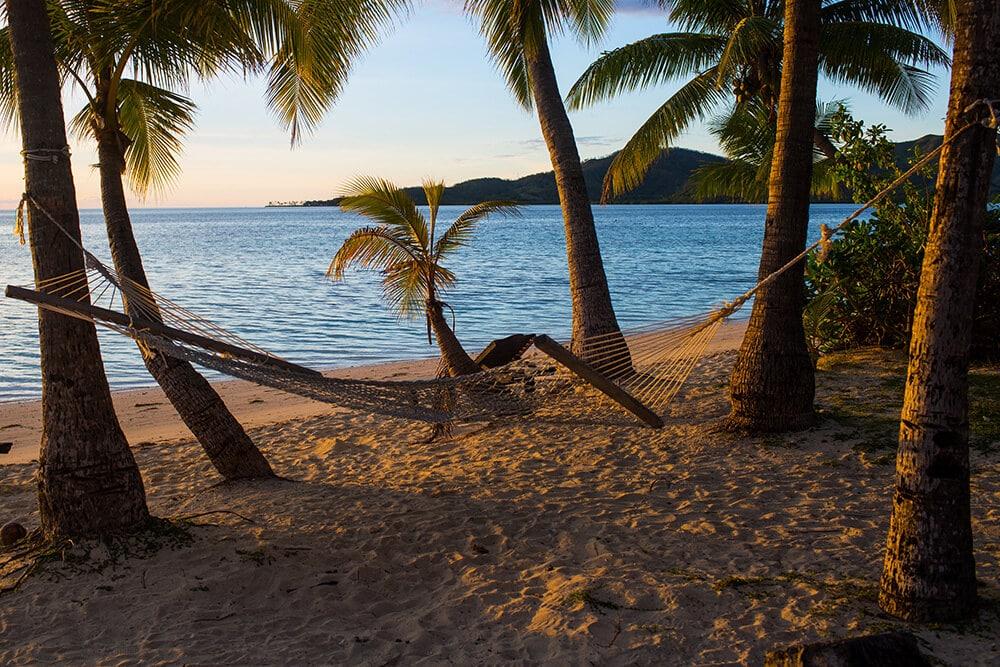 Plantation Island - Loyalty Program